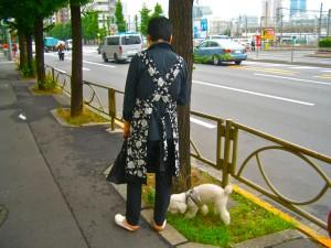 An Aproned Walk